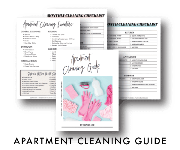 APARTMENT CLEANING GUIDE6