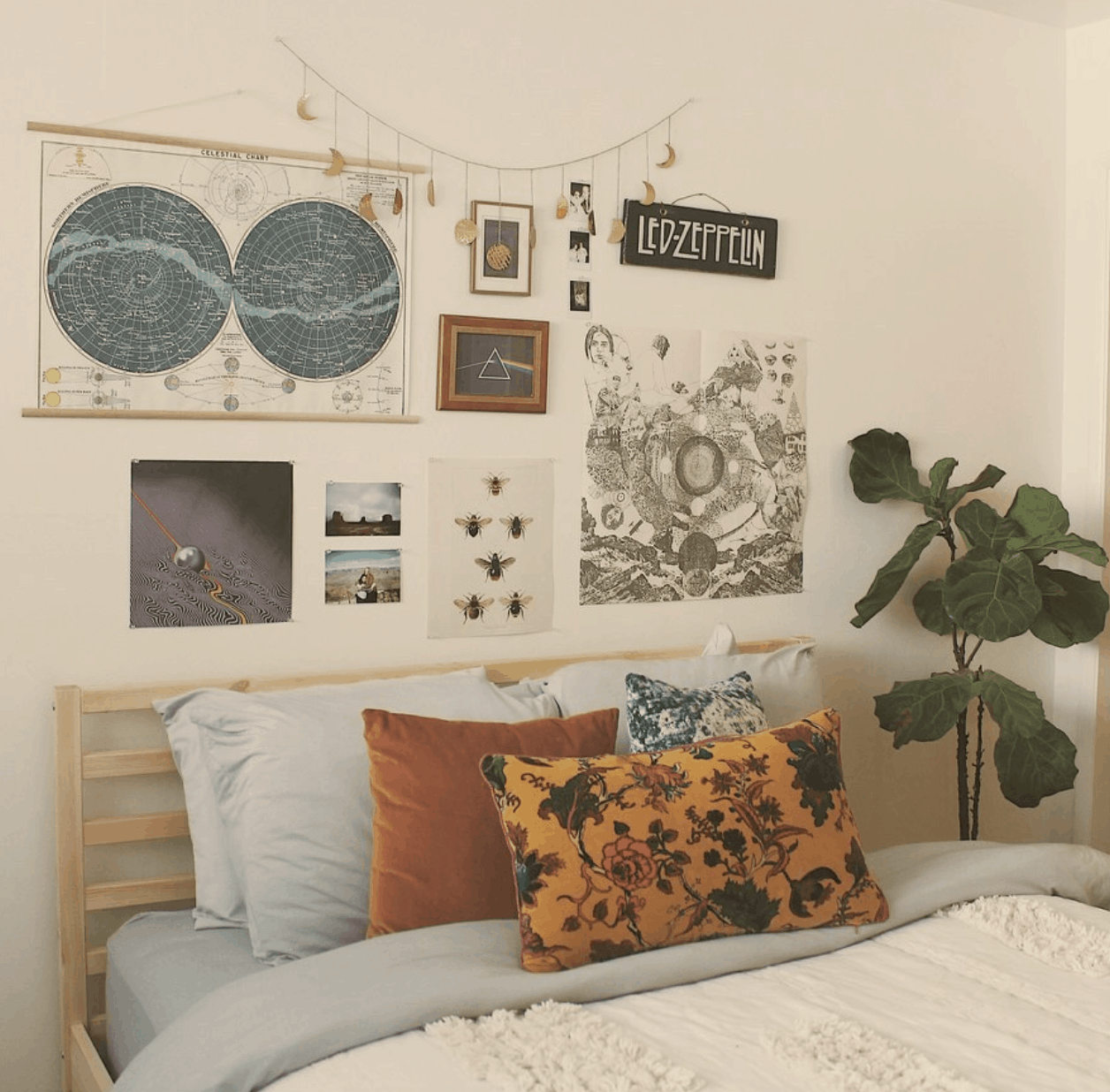 cool dorm room ideas